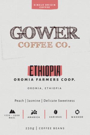 Ethiopia Oromia Farmers Co-op